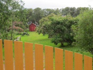 Skogsholmjordet (foto: Ottar Zahl Jonassen)